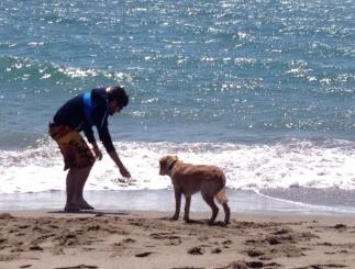 vacaciones-con-perro